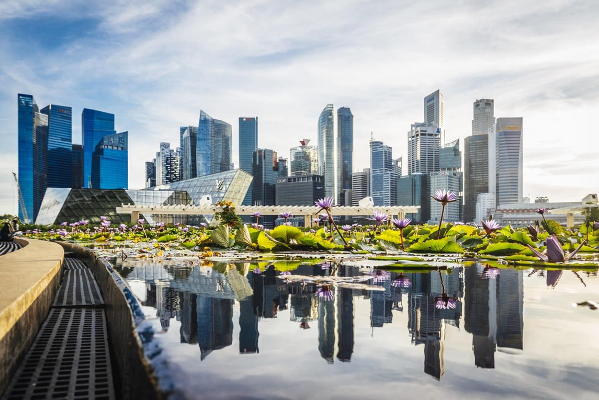 Singapore 航空券
