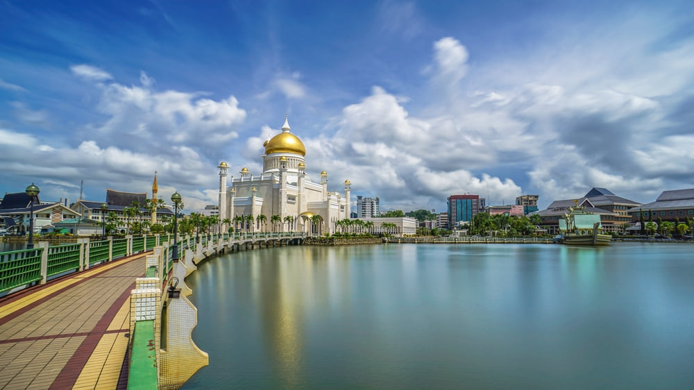 Brunei Darussalam:A Haven for Bountiful Wildlife