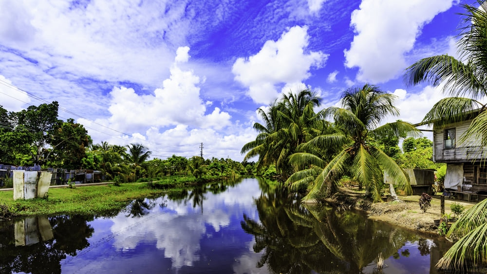 Suriname: 10 Must-see Attractions in Suriname