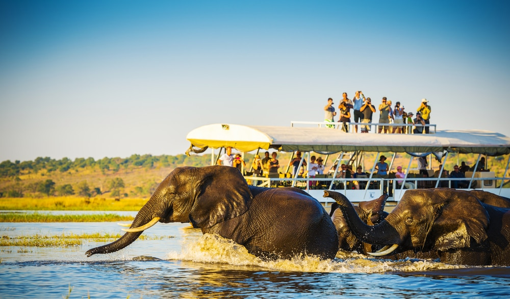 Botswana:A Fantastic Piece of African Wildlife