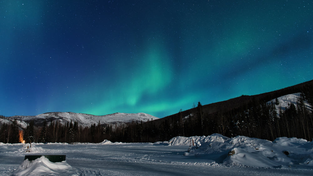Fairbanks:Witness The Northern Lights, Touch Arctic Pole and Dance with Reindeer