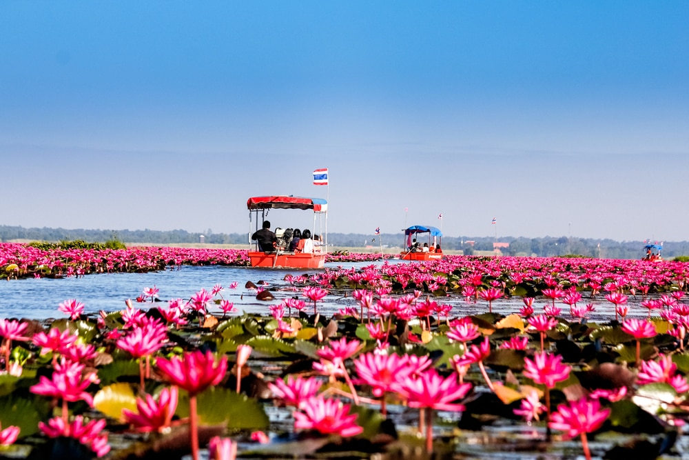 Udon Thani : A Historic City in Thailand with Stunning Temples and Attractions