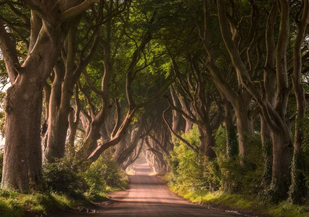 Ready for the Last Season of Game of Thrones? Here's Our Roundup of the Most Beautiful Filming Locations