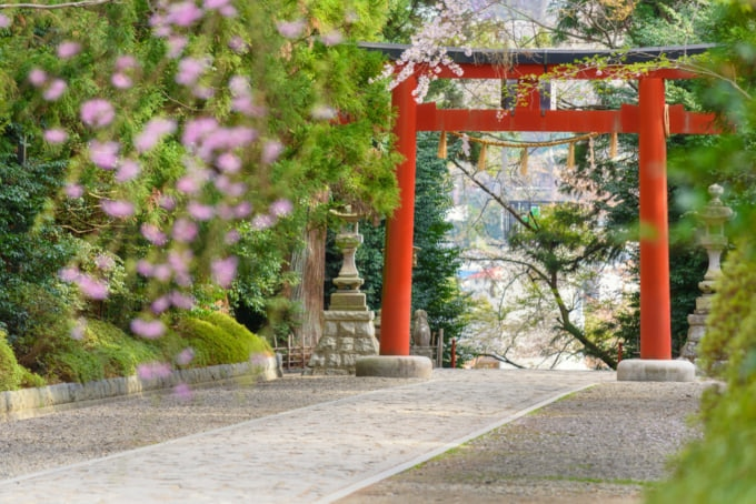 Path of the kamigami.