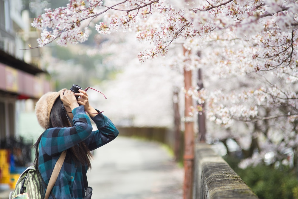 5 Reasons Japan is Perfect for Solo Traveling