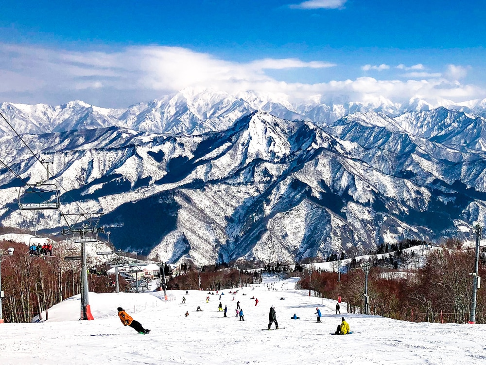 10 Picture-Perfect Sightseeing Spots and Experiences in Niigata