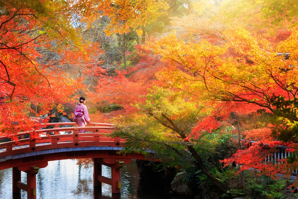9 Things to Do in Japan During the Autumn Season