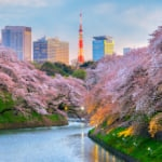 Visiting Japan in the Spring
