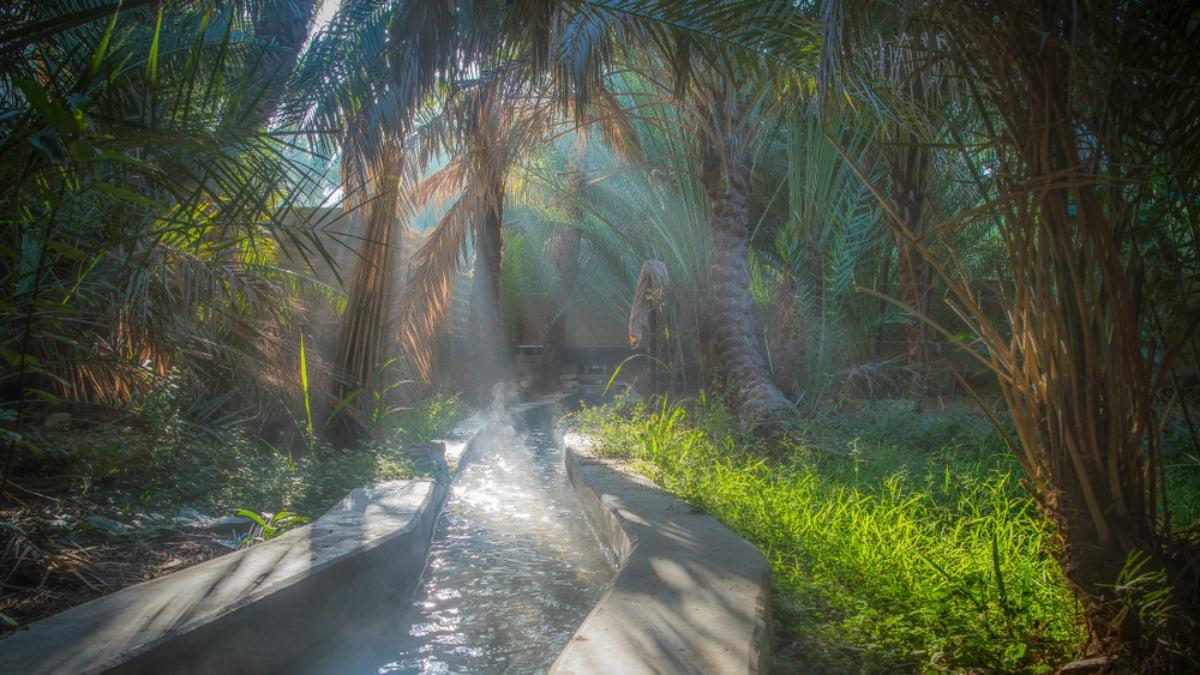 5 Incredible Day Trips to Take from Dubai