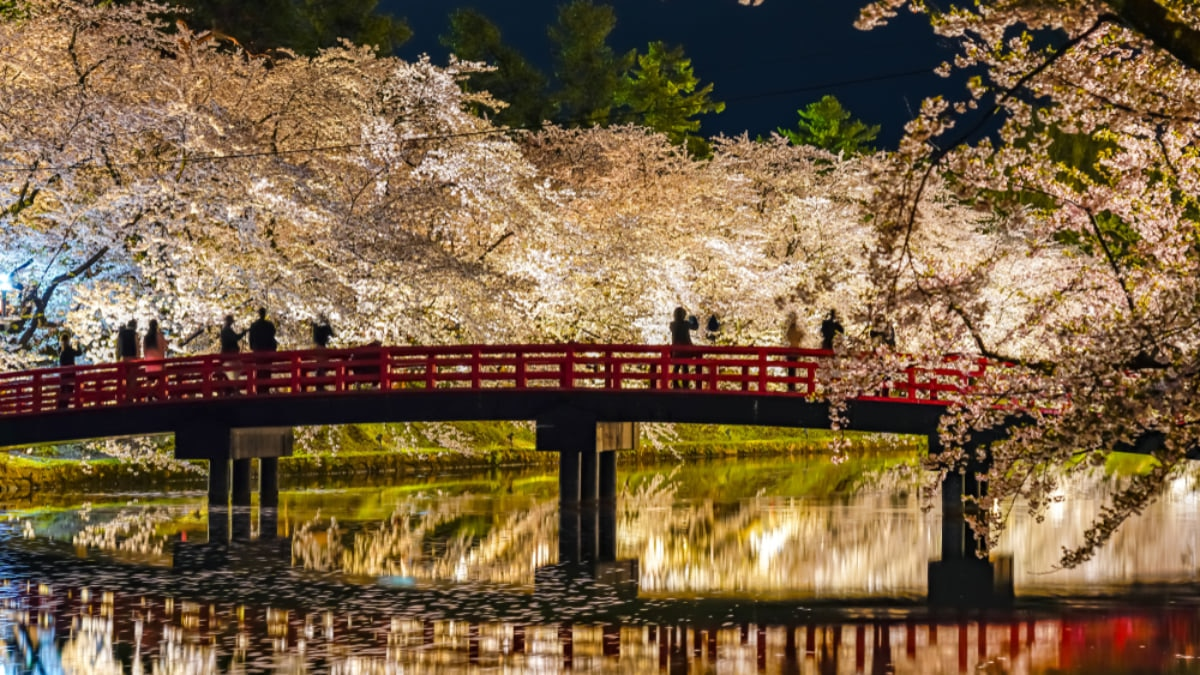 7 Great Reasons Why You Should Make Japan Your Next Holiday Destination