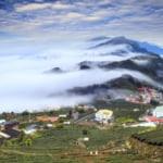 Alishan,Chiayi County,Taiwan