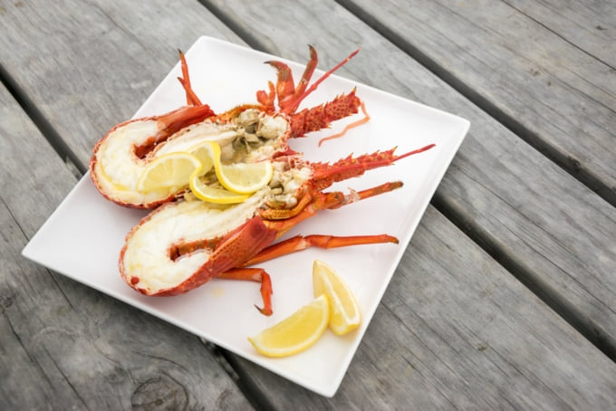 Crayfish from New Zealand