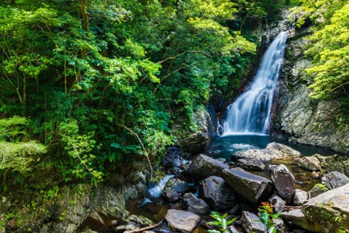 Yanbaru National Park in Okinawa Main Island